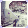 Seoul's first snowfall of December 2012!