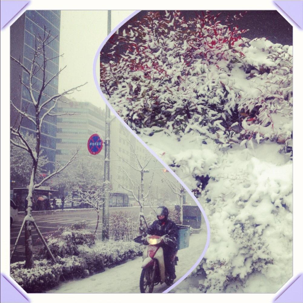 Seoul's First Snowfall