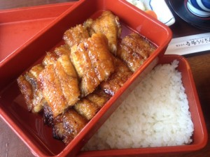 Japanese eel over rice Unagi