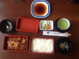 Japanese eel meal Unagi