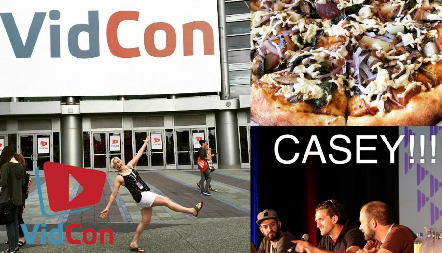 What I learned at Vidcon 2016 | My Trip to Vidcon!